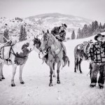 CALLING ALL COWBOYS par Irene Oleksiuk